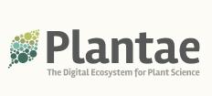 Plantae-228wide-2